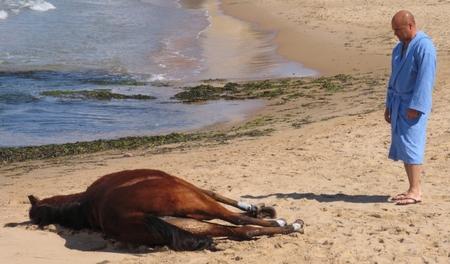 montalbano-la-pista-di-sabbia