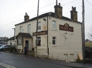 The Brown Horse