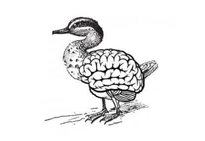 cerebro-pato