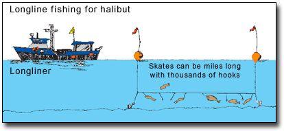 a1d68a9c7ff96163b6e6a5216e4807a2--kodiak-alaska-alaska-fishing
