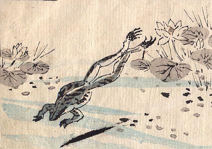 grenouille-etang