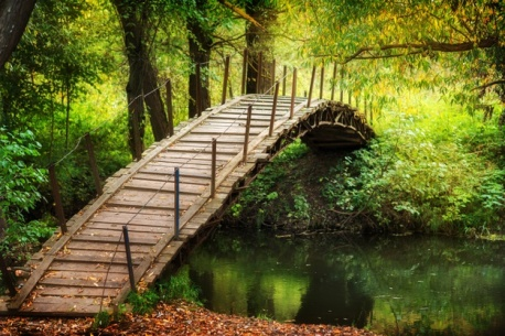 pont-bois-riviere-passerelle-rustique-feuilles-automne-journee-ensoleillee_300943-45